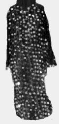 <b>Paillette Dress</b>